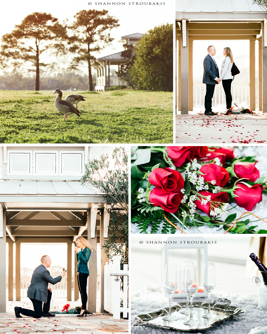 the-woodlands-engagement-proposal-photographer